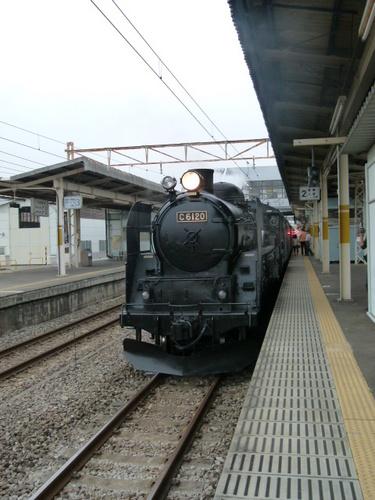 P1130348.JPG